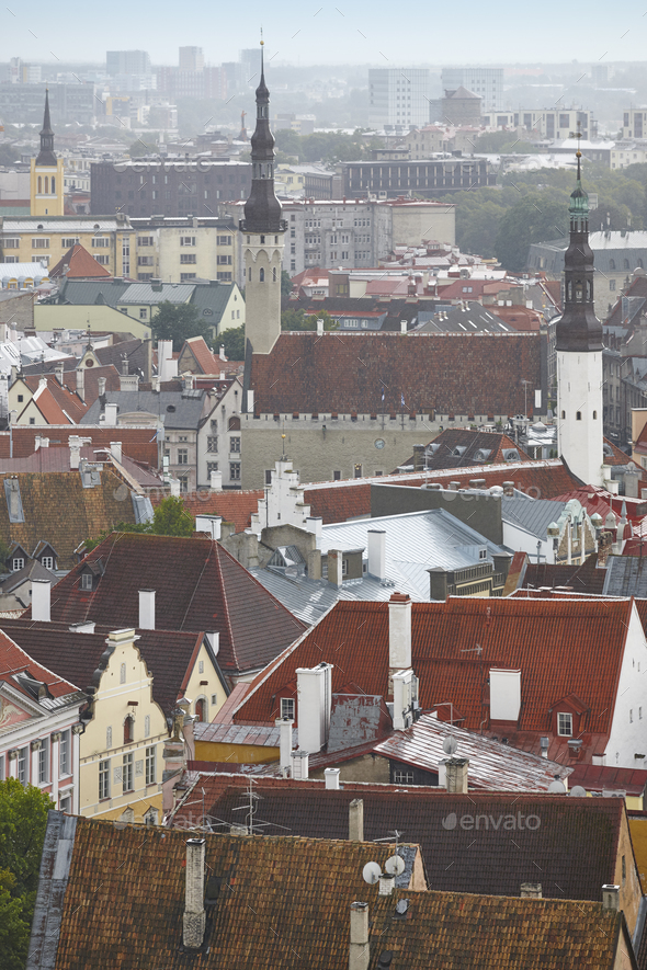 Tallinn old town cityscape view. Tourism landmark. Estonia. Europe - Stock Photo - Images