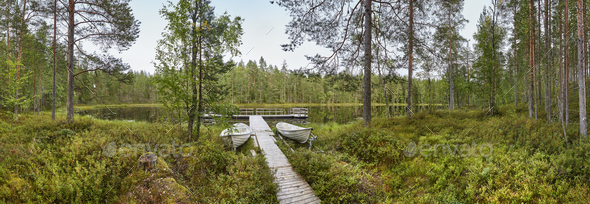 Finland panoramic landscape with forest and lake. Finnish environment. Horizontal - Stock Photo - Images