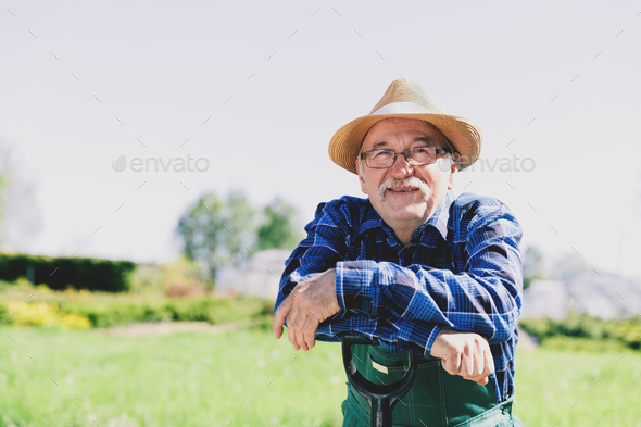 Portrait of a senior gardener standing in a garden - Stock Photo - Images