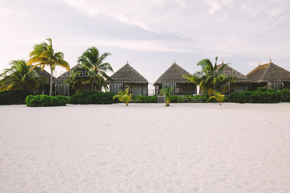 Exotic cabins on a sandy beach with palms and bushes - Stock Photo - Images