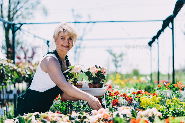 Woman selecting flowers in a gardening center - Stock Photo - Images