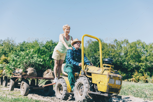 Older couple riding on tractor trailer - Stock Photo - Images