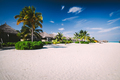 Straw houses on a sandy beach with tropical flora on Maldives - PhotoDune Item for Sale
