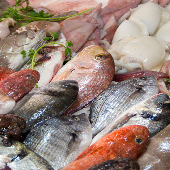 Mixed fish for sale on a market - Stock Photo - Images