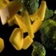 A Piece of Pumpkin with Broccoli Isolated on a Black Background - VideoHive Item for Sale