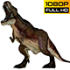 T-REX 4 Realistic Pack 5 - VideoHive Item for Sale