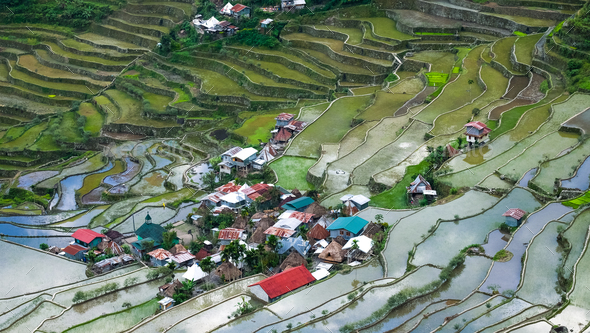 Village houses near rice terraces fields - Stock Photo - Images