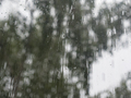 Rain drops on window glasses surface with trees against the sky - PhotoDune Item for Sale