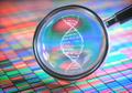 Amplifying DNA Helix - PhotoDune Item for Sale