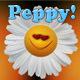 Peppy Catchy Upbeat Motivation