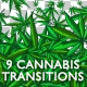 9 Cannabis Transitions - VideoHive Item for Sale