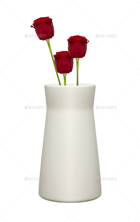 Red Roses in Vase isolated over white - Stock Photo - Images