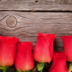 Valentines day greeting card with roses - PhotoDune Item for Sale
