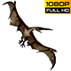 Pteranodon 2 Realistic Pack 3 - VideoHive Item for Sale