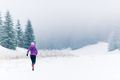 Woman running on winter trail, fitness inspiration and motivatio - PhotoDune Item for Sale