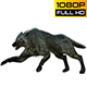 Wolf 1 Realistic Pack 3 - VideoHive Item for Sale