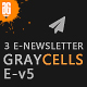 Graycells-Email v5 | 3 Fashion Ecommerce Email Newsletter - ThemeForest Item for Sale