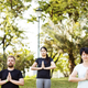 Free Download People doing yoga at the park Nulled