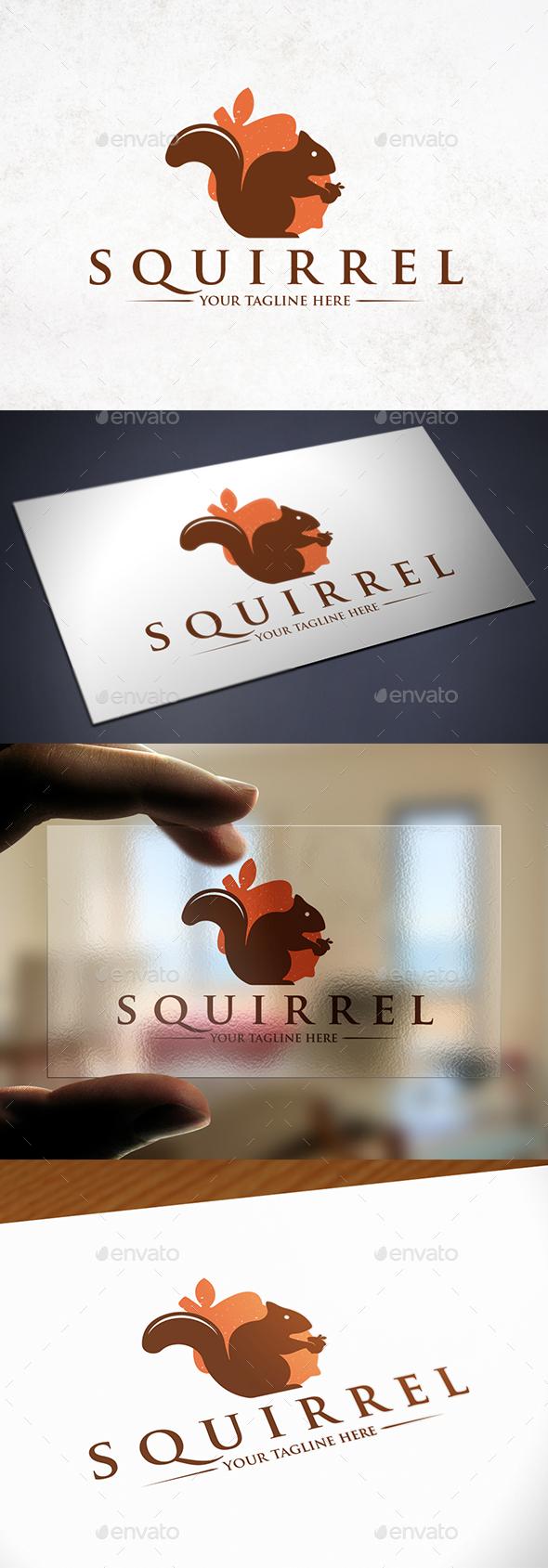 Squirrel Nut Logo Template - Animals Logo Templates
