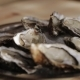 The Cook Puts the Oysters on a Plate with Ice - VideoHive Item for Sale