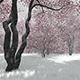 Nature Season  - VideoHive Item for Sale