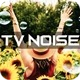 TV Noise Overlay - VideoHive Item for Sale