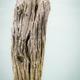 textured wood - PhotoDune Item for Sale