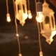 Decorative Antique Edison Style Filament Light Bulbs Hanging in the Woods - VideoHive Item for Sale