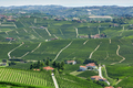 Green countryside aerial view with vineyards in Italy - PhotoDune Item for Sale