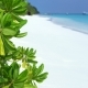 Perfect Wild Sandy Maldives Beach with Turquoise Sea View - VideoHive Item for Sale