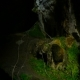 View of the Luscious Greens Inside the Dark Cave - VideoHive Item for Sale
