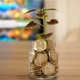 Tree Growing on Money - VideoHive Item for Sale
