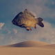 Desert and Fish - Surreal Scene - VideoHive Item for Sale