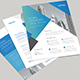 3 Professional Business Flyers - GraphicRiver Item for Sale