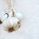 Bunch of garlic hanging on the wall - PhotoDune Item for Sale