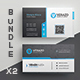Business Card Bundle 48 - GraphicRiver Item for Sale