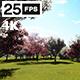 In Grarden 4K - VideoHive Item for Sale
