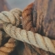 Knot Rope - VideoHive Item for Sale