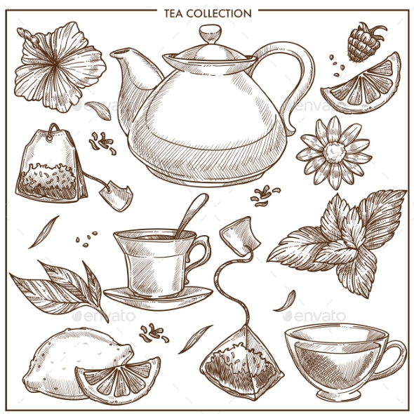 Tea Collection - Food Objects