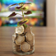Tree Growing from Coins - VideoHive Item for Sale