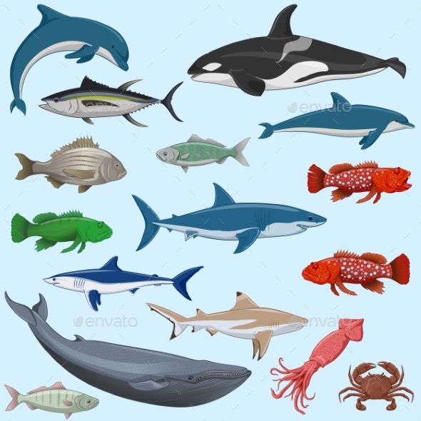 Vector Set of Sea Animals - Animals Characters