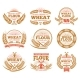 Wheat Grain Product and Bread Vector Labels
