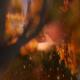 Magic Lake 6 - VideoHive Item for Sale