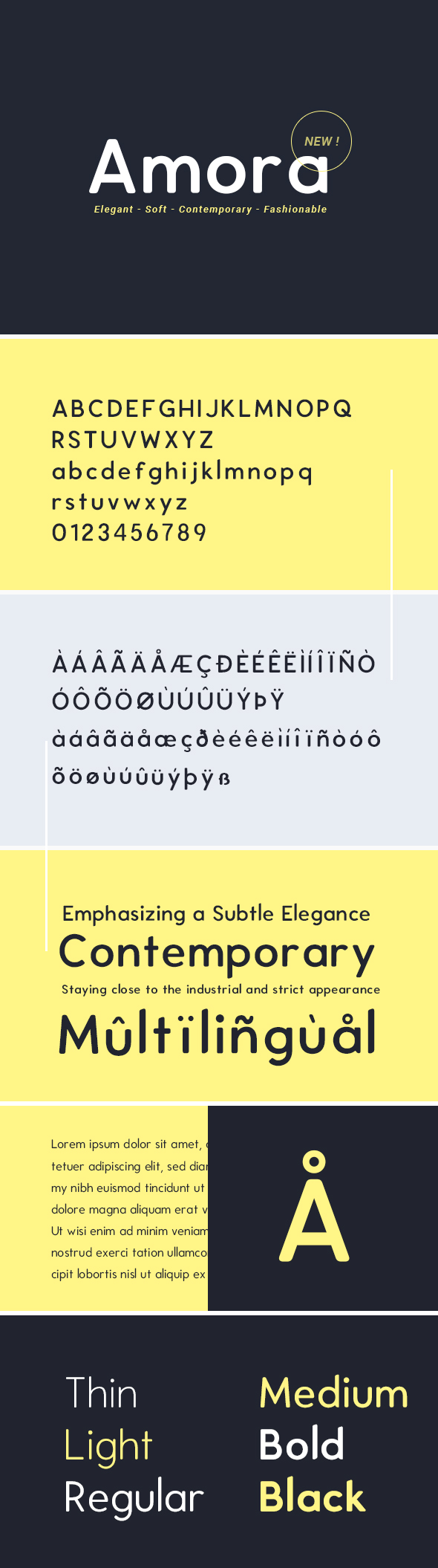 Amora - Luxury, Elegant, Soft Sans Serif Font - Sans-Serif Fonts