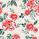 Roses Backgrounds - GraphicRiver Item for Sale