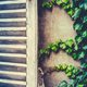 Retro French Cottage Shutters - PhotoDune Item for Sale