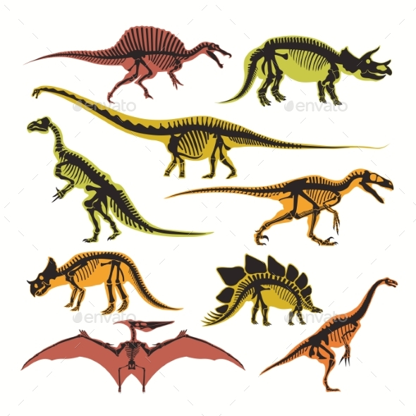 Dinosaurs Skeletons and Silhouettes Vector Flat - Animals Characters