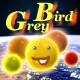 GreyBird_Sound