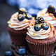 Homemade delicious chocolate cupcakes with fresh berries on top - PhotoDune Item for Sale
