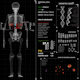 Medical Panel 4K (6in1) - VideoHive Item for Sale